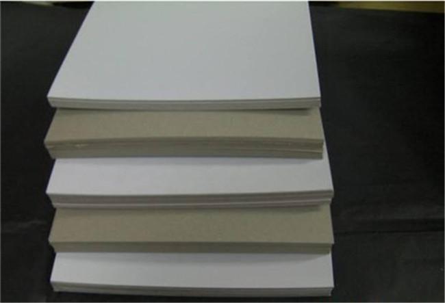 地龙纸 苏州地龙纸型号齐全 金东浩供